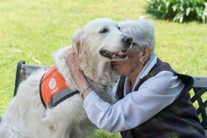 4 de octubre: Día Mundial de los Animales Según un nuevo estudio de Fundación Affinity sobre el Vínculo entre las personas y los animales de compañía