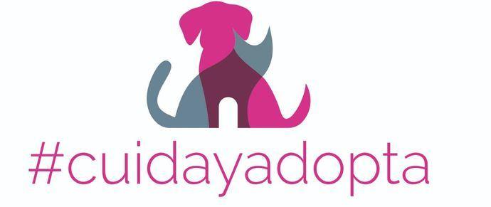 """#CuidayAdopta, el portal de adopciones de la Asociación Española de Veterinarios Municipales, estrena redes sociales y una nueva sección de """"Servicios Profesionales"""""""