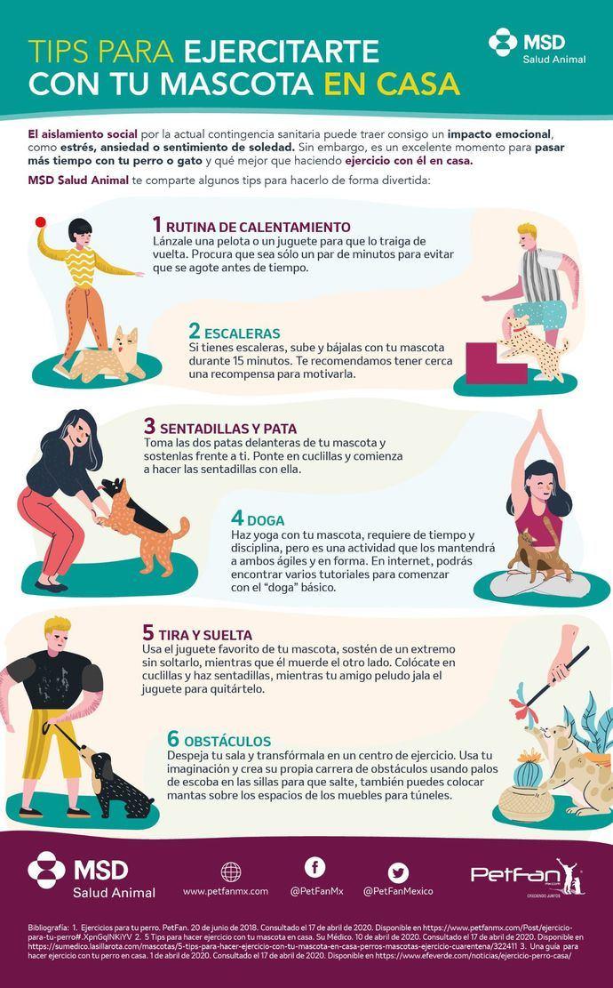 Ejercitarte con tu mascota en casa reduce estrés y ansiedad por confinamiento ante la contingencia