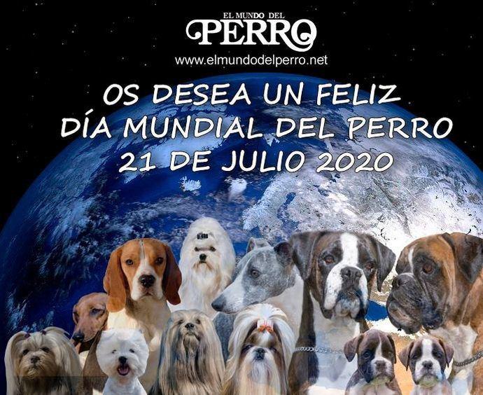 21 de julio Día Mundial del Perro