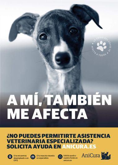 AniCura crea un fondo social para ofrecer asistencia veterinaria especializada a las personas económicamente vulnerables por la COVID-19