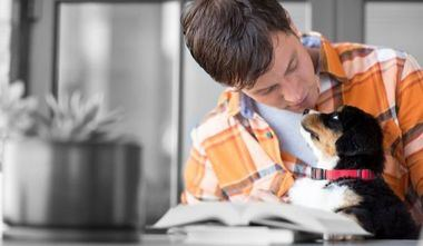 Decálogo de consejos para cuidar de las mascotas durante las Navidades