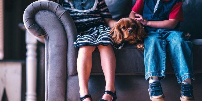 Niños y Covid-19: cómo los animales de compañía ayudan a pequeños y adolescentes