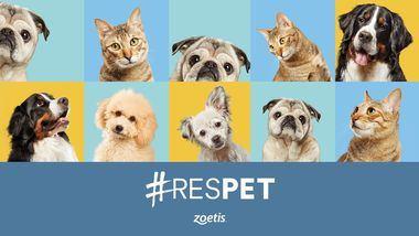 Anita, Jako, Lokyta y Dorm: historias reales e inspiradoras reflejo de #RESPET