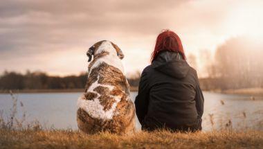 """El efecto """"espejo emocional"""" en nuestros perros"""