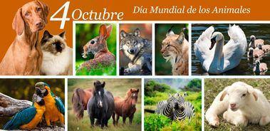 Cada 4 de octubre en todo el mundo se celebra el Día Mundial de los Animales