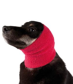 Banda protectora anti-estrés para perros