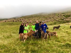 El equipo de esta Aventura Trashumante ha conocido el día a día de cinco pastores  que, ayudados por mastines, cuidan de rebaños de más de 1.000 ovejas