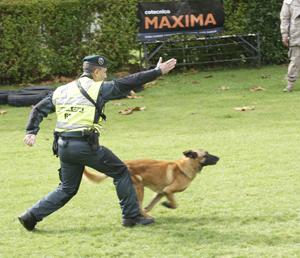 Cotecnica MAXIMA, suministrador oficial de la Guardia Civil por 5ª vez consecutiva.