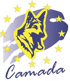 Comienza la temporada de cursos en Camada
