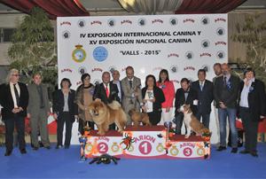 Valls 2015 IV Exposición Internacional Canina y XV Exposición Nacional Canina